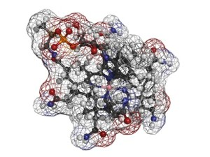 Vitamine B12 (cyanocobalamine) molecule