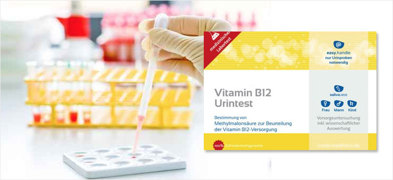 Analyse urinaire : Carence en vitamine B12