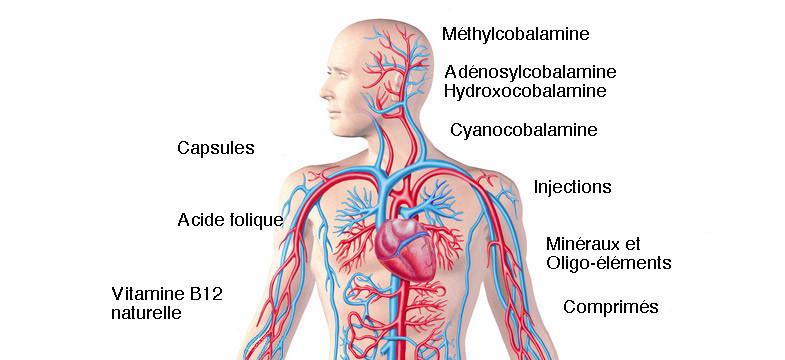 Carence en vitamine B12 – traitement et thérapie