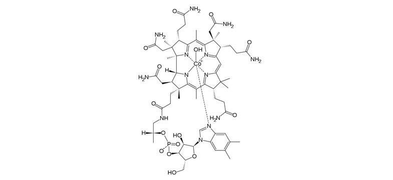 Hydroxocobalamine, longue durée d'efficacité